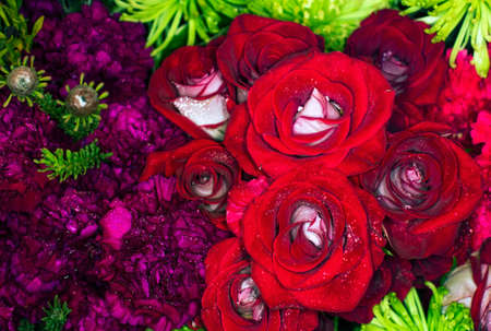 beautiful flowers wall background with amazing roses