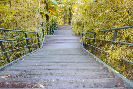Wooden staircase down from hill photo