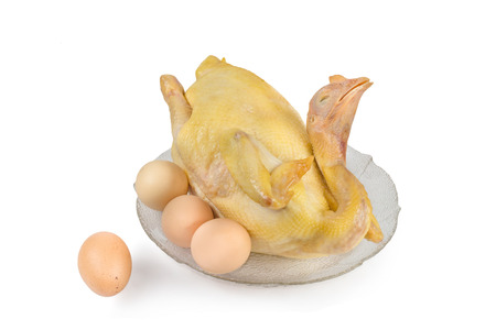 chicken meat: boiled chicken with egg, isolated on white background Stock Photo