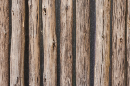 palisade: Wooden Palisade background