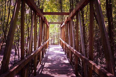 wooden bridge: wooden bridge in the Mangrove forest,vintage effect filter