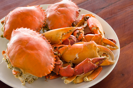 prepared: steamed crabs prepared on plate. Stock Photo