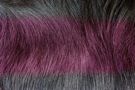 textura pelo: rojo textura del pelo del color como fondo Foto de archivo
