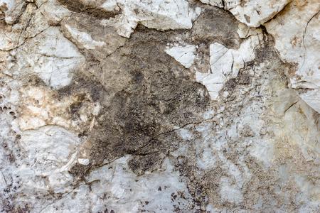 fastness: Closeup rock pattern in nature