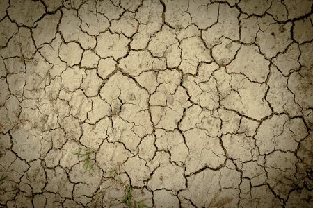 dry and crack soil ground