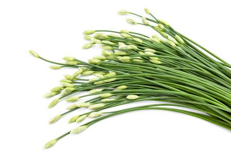 ramosum: garlic chive in threshing basket isolated on white.