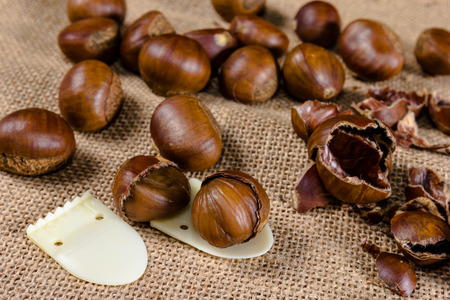 fresh chestnuts with sack bag background