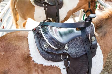 closeup black saddle on horse Stock Photo - 81191001