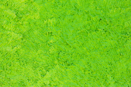 green cement wall or floor textured,Abstract background