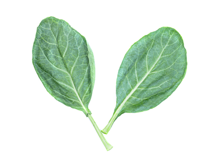 bok choy: leaves of collards on background,Chinese kale