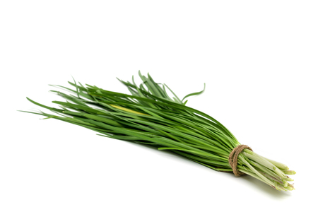 garlic chive isolated on white background