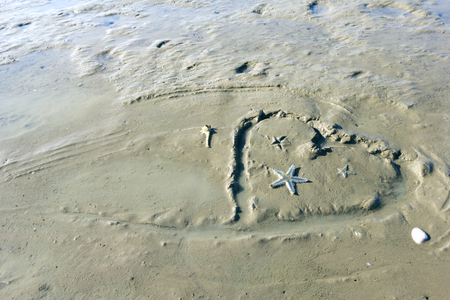 heart-shaped drawing on beach sand with starfish