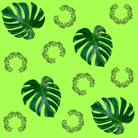 Green palm leaves pattern for nature concept,tropical leaf on green background Stock Photo
