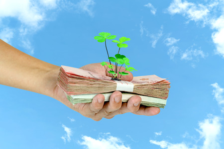 Hand holding banknotes with tree on white cloud and blue sky background,Lucky economic growth concept