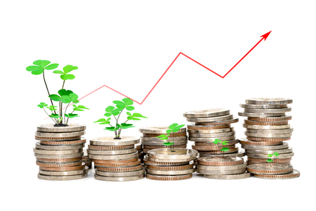 coins stacks and tree with chart of indicators isolated on white background,Lucky finance business growth concept