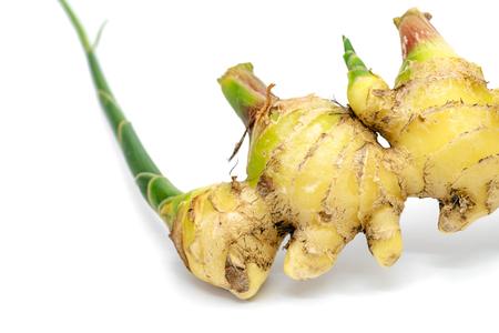 closeup fresh ginger on white background Stock Photo