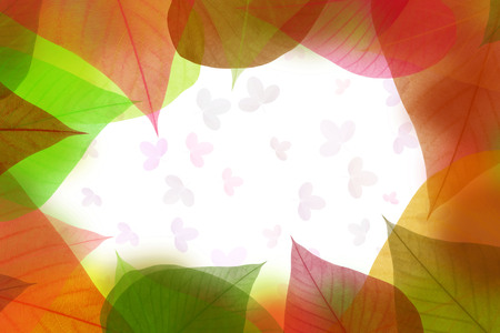 colorful leaves pattern on white background,gradient color pastel autumn leaf,ideas graphic design for web or banner