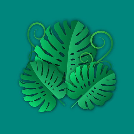 Green leaves pattern for nature concept of paper art ,tropical monstera leaf textured background,vector or illustration style