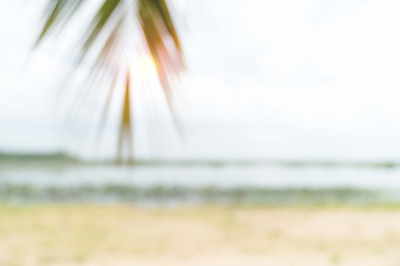 Blur summer sea with beach and coconut leaves and copy space for travel landscape concept