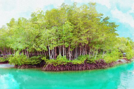 The forest mangrove with blue sky background ,watercolor digital painting style