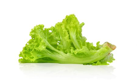 Lettuce leaf isolated on white background ,Green leaves pattern ,Salad ingredient Stockfoto