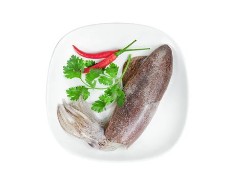 squid on dish with chili and coriander isolated on white background