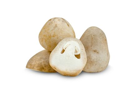Straw mushroom isolated on white background ,include clipping path Stock Photo
