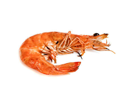 roasted prawn isolated on white background ,grilled shrimp