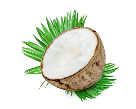 Coconut milk tropical fruit or fluffy coconut cut in half with palm leaf isolated on white background Standard-Bild