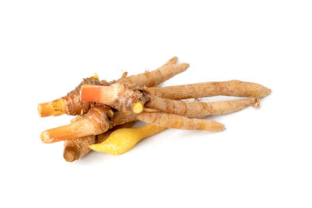 finger root or Chinese's Ginger isolated on the white background.