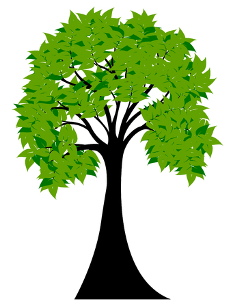 green tree: Decorative Green Tree Silhouette With Green Leaves