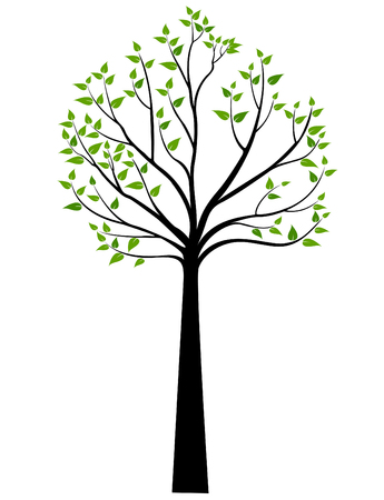 branches with leaves: Decorative Spring Tree Silhouette With Green Leaves