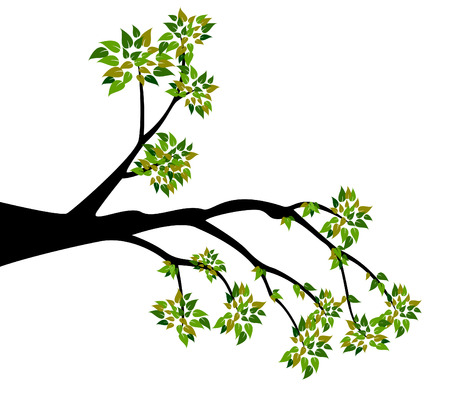 branches with leaves: Decorative Spring Branch Tree Silhouette With Green Leaves Illustration
