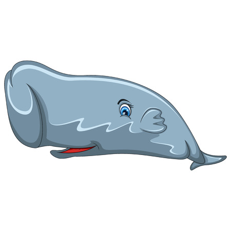 flukes: Sperm Whale cartoon Illustration
