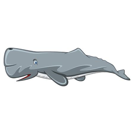 Sperm Whale cartoon Illustration