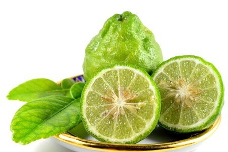 dicot: Kaffir lime leaves and fruits, Citrus hystrix, Central of Thailand