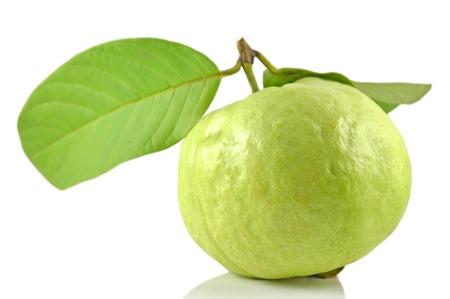 myrtaceae: Guava fruit, Psidium sp., Family Myrtaceae, Central of Thailand