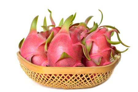 epiphyte: Dragon fruit in bamboo basket, Hylocereus undatus, Central of Thailand Stock Photo