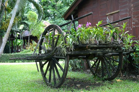 orchid house: Thai style wooden cart at Saranrom Royal Garden Bangkok Thailand