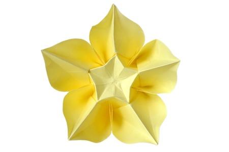 Origami carambola flower on white background stock photo picture origami carambola flower on white background stock photo 58412237 mightylinksfo