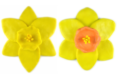 modelling clay: Modelling clay daffodil flower on white background