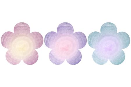 Flower shaped onion on white background
