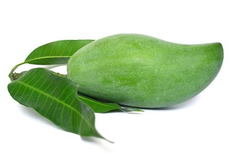 Mango, Mangifera indica, Central of Thailand 版權商用圖片