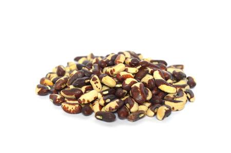 Yard long bean seed on white background 版權商用圖片
