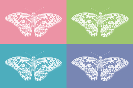 Bottom view of lime butterfly, Papilio demoleus, on colorful background
