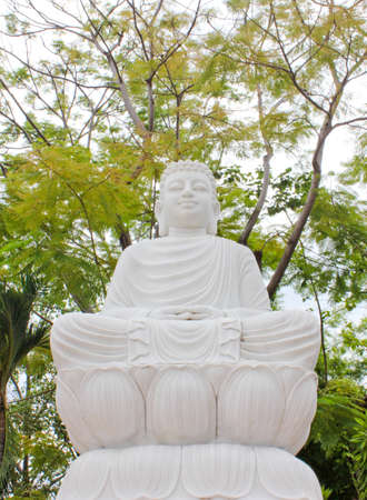 The sitting Bodhisattva Statue with big tree background
