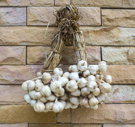 Garlic on the wall background