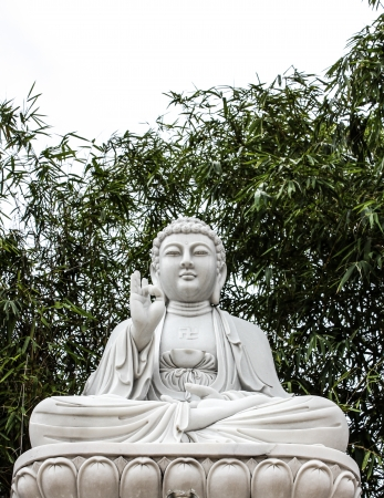 The sitting Bodhisattva Statue with big tree background Stock Photo - 18845500