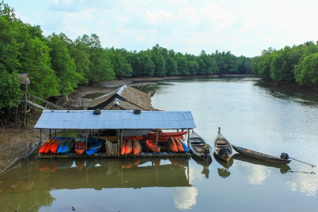 Mini house and stone mountain in the mangrove swamp Stock Photo