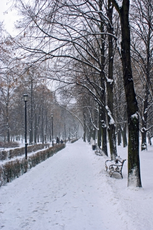 polska: Winter in Warsaw Stock Photo